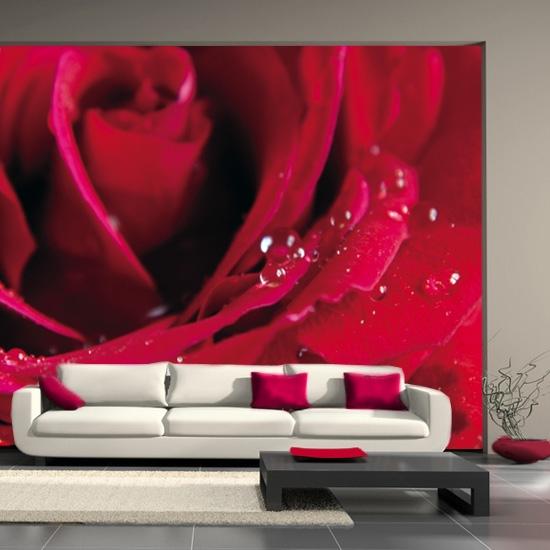 fototapeta czerwona róża w salonie