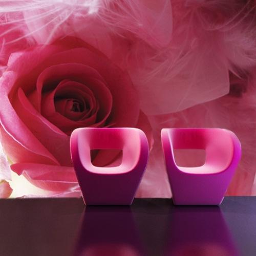 Różowa róża fototapeta do salonu