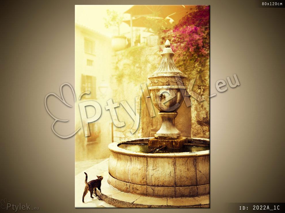 Canvas print: prowansalska miejscowość, fontanna, kot