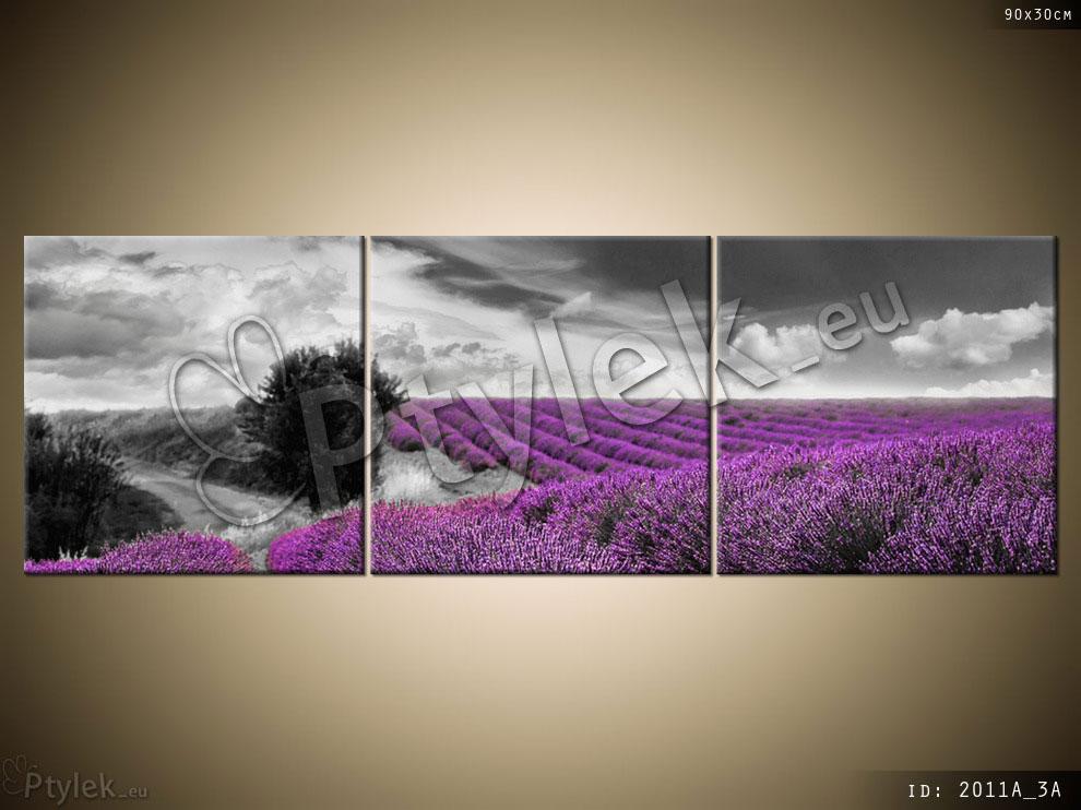 Tryptyk: kwiaty, fioletowe pole lawendy