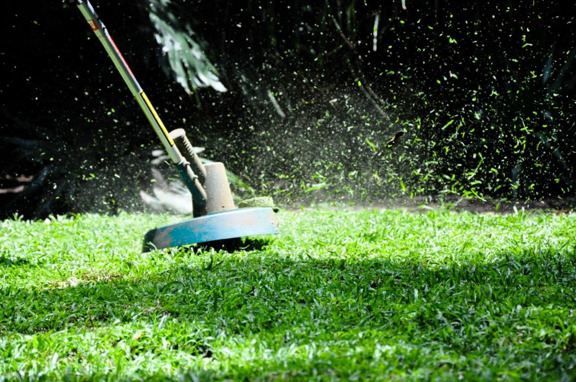 wykaszarka-kosiarka-koszenie-trawy-trawnik