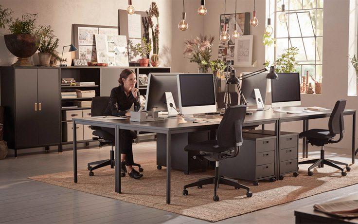 Biophilic design, czyli roślinność wkracza do biura